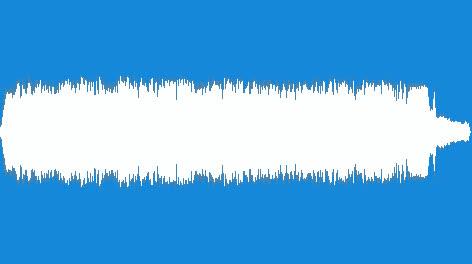 Blower-Leaf-02