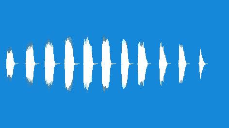 Noisemaker-Duck-Call-01
