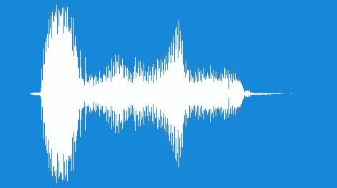 Noisemaker-Duck-Horn-01