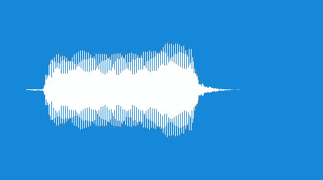Noisemaker-Duck-Horn-04