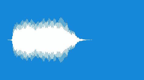Noisemaker-Duck-Horn-05