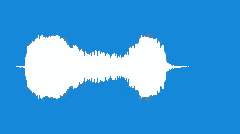Noisemaker-Duck-Horn-06