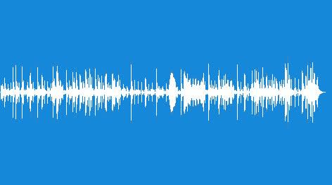 Percussion-Timbali-13