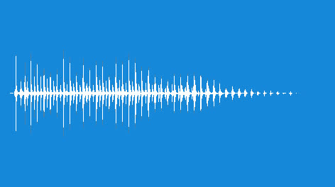 Percussion-Vibraslap