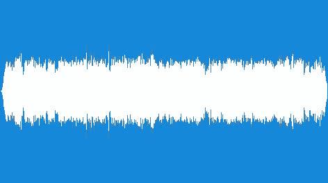 Sweden-Crowd-02