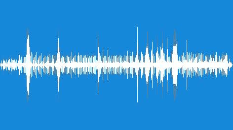 Sensuous-Rhythm