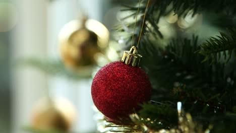 Christmas-Tree-Focus-Pull