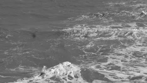Slow-Motion-Waves-Crashing