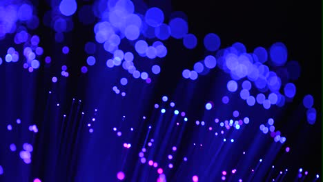 Fiber-Optics-Macro-Shot-09