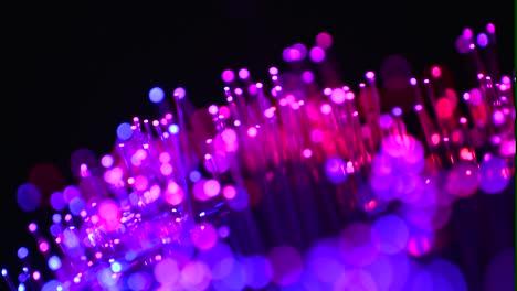 Fiber-Optics-Macro-