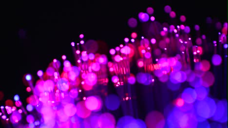 Fiber-Optics-Macro-Shot-21