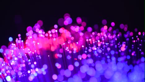 Fiber-Optics-Macro-Shot-26