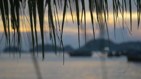 Out-Of-Focus-Shot-of-Sunset-at-Vietnamese-Harbour