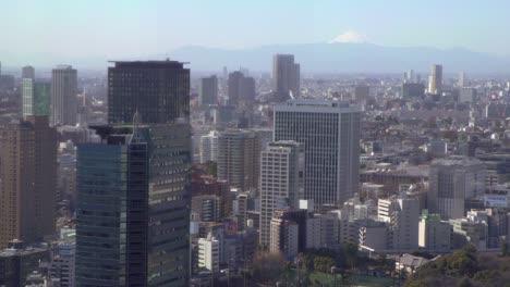 Tokyo-Buildings-with-Mt-Fuji