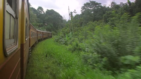 Sri-Lankan-Train-Going-Through-Jungle
