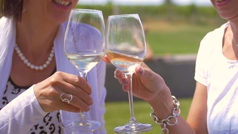 Two-Women-Clinking-Wine-Glasses