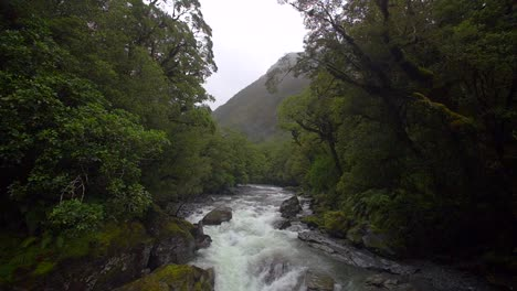 Fast-Flowing-River-in-Jungle
