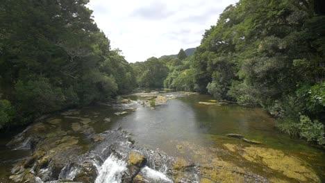 River-Running-Through-Forest