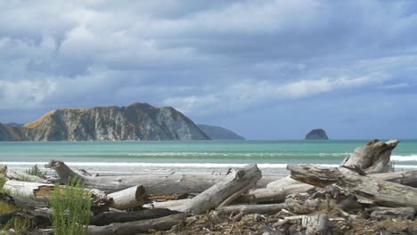 Tolaga-Bay-New-Zealand