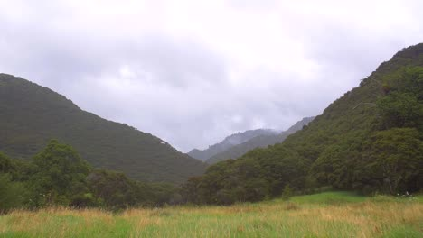 New-Zealand-Green-Rolling-Hills