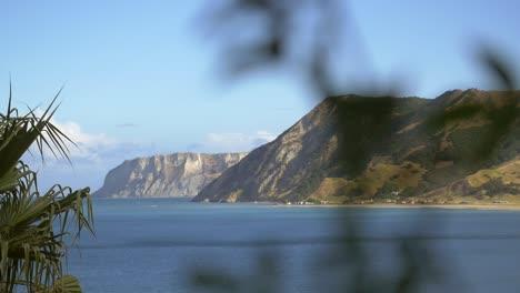 New-Zealand-Coastline