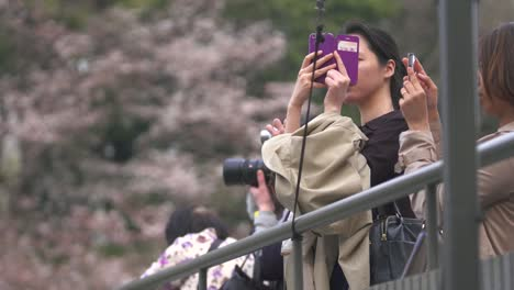 Lady-Taking-Photos-on-Smartphone