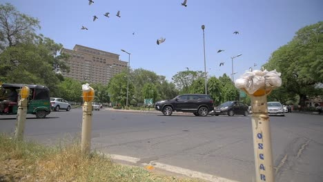 Pigeons-Take-Flight-Over-Indian-Intersection