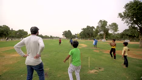 Indian Children Playing Cricket in a Park Free Stock Video ...