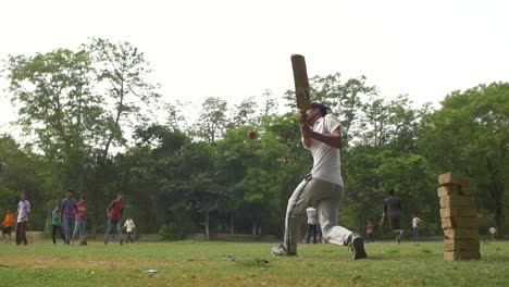 Man-Batting-in-a-Cricket-Game-in-India