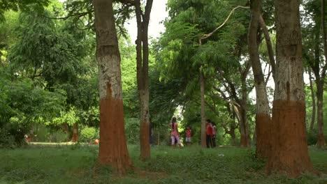 Panning-Shot-of-Children-in-a-Park