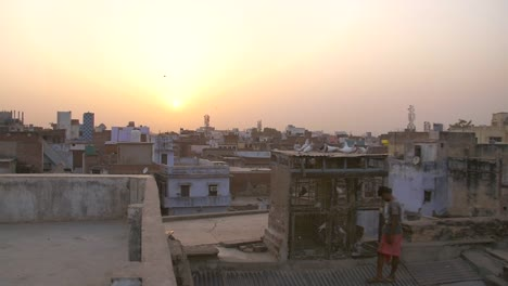 Doves-Settle-on-Indian-Rooftop-