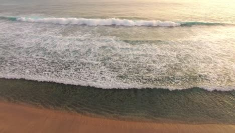 Tropical-Shoreline-Aerial-Shot