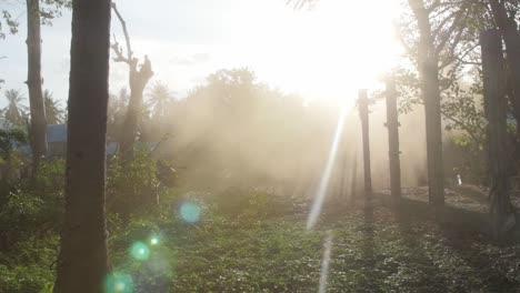 Sunbeams-Shining-Through-Dust-Cloud