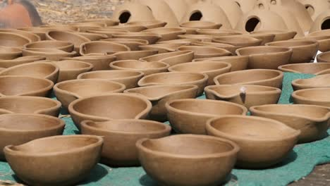 Butterfly-Taking-Off-From-Clay-Pots-Left-to-Dry