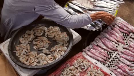 Panning-Across-a-Selection-of-Fish-at-a-Stall
