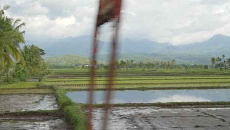 Indonesian-Rice-Fields-and-Hills
