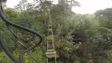 Walking-Across-Tree-Top-Bridge