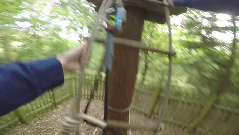 Climbing-Ladder-on-Obstacle-Course