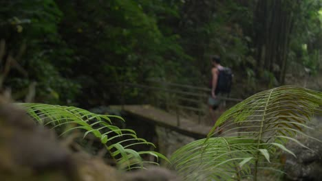 Out-of-Focus-Man-on-a-Wooden-Bridge