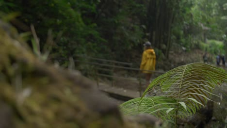 Hikers-Crossing-a-Wooden-Bridge