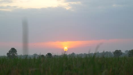Sunset-Over-Indonesian-Fields