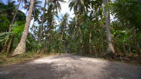 Motorcyclist-on-a-Jungle-Road