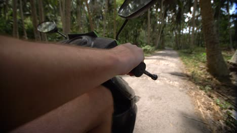 POV-Riding-Through-a-Jungle-on-a-Moped