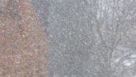 Wintery-Snowfall-Scene