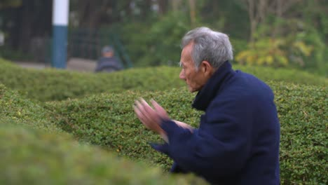 Man-Performing-Tai-Chi-in-Hong-Kong-Park