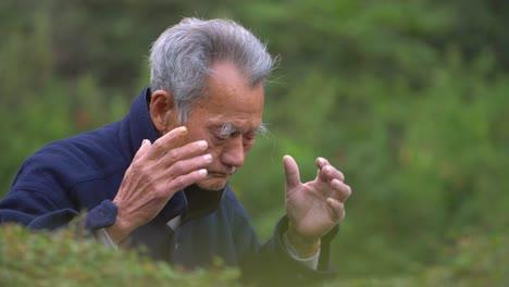 Elderly-Man-Performing-Tai-Chi