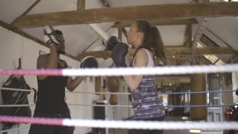 Amateur-Boxers-Training-in-Ring