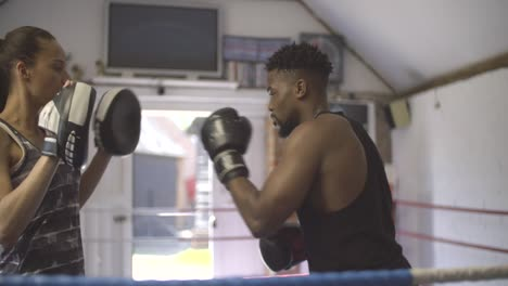 Young-Boxer-Training