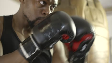 CU-of-Boxer-Punching