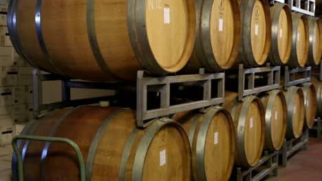 Barolo-Wine-Barrels-Turin-Italy
